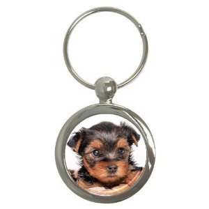 Yorkshire Terrier Puppy Dog 8 Round Key Chain AA0655