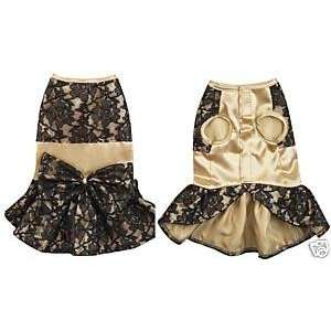 Z & Z Lace Satin Dress Xsm Gold