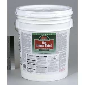 Quality Shield Exterior Flat Latex House Paint Tint Base