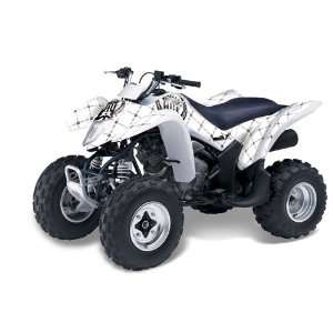 Silver Star AMR Racing Suzuki LTZ 250 2004 2011 ATV Quad Graphic Kit