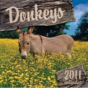 2011 Animal Calendars Donkeys   12 Month   30x30cm