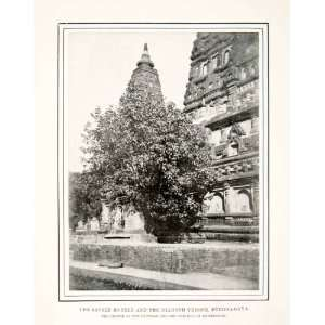 1904 Print Sacred Bodhi Bo Fig Tree Diamond Throne Buddha Gaya India
