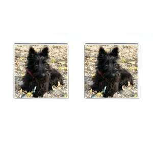 Scottish Terrier Puppy Dog 2 Square Cufflinks F0763