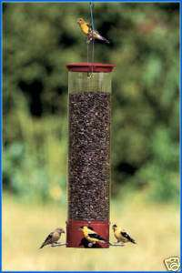 Droll Yankees Dipper Squirrel Proof Bird Feeder NEW